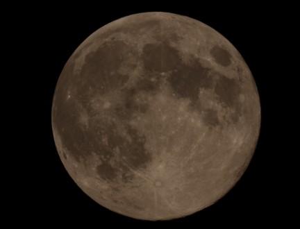 Moon83