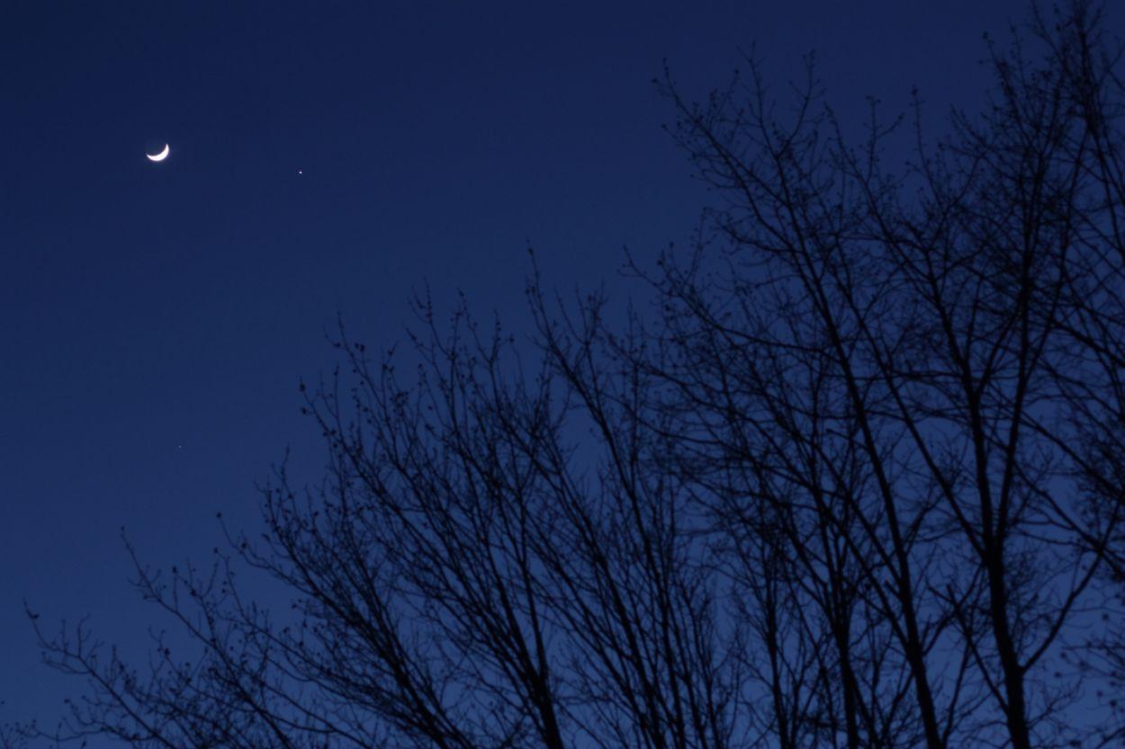 Shooting for the Stars: Canon Rebel XSi | --FlyTrapMan--