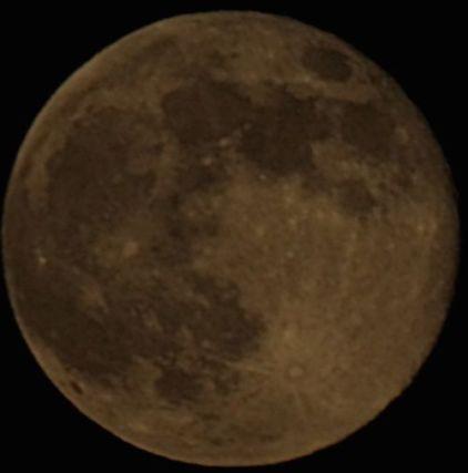 moonop1-3