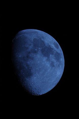 Blue Moon-1