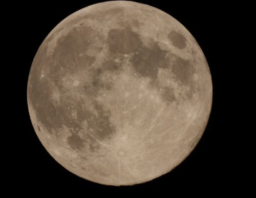 moon81-2
