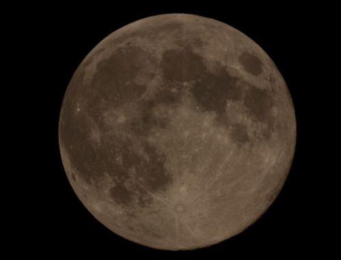 moon83-8