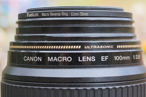 Lens34
