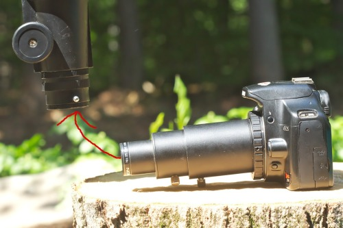 camera adapter-7