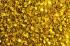 sea-of-gold-glitter-1-1